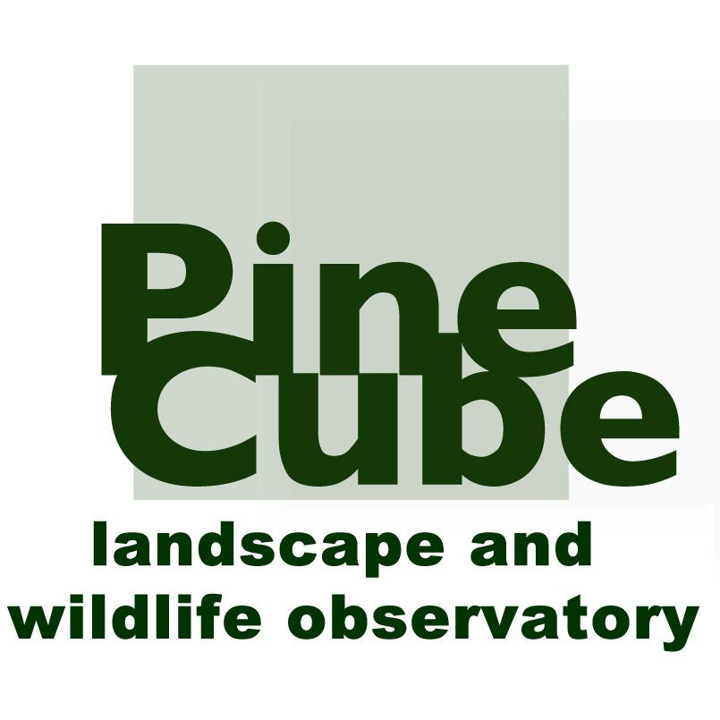 PineCube.eu